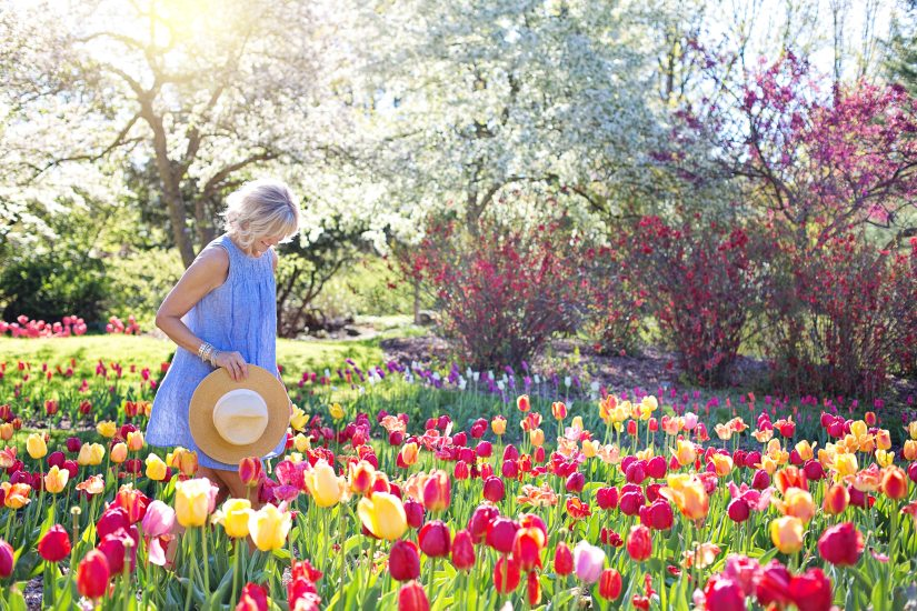 beautiful  blooming  blossom  blossoming  blossoms  countryside  female  field  flowers  garden  happiness  happy  landscape  natural  nature  outdoors  park  person  season  spring  springtime  summer  sunny  sunshine  tulips  woman  young woman  royalty free images